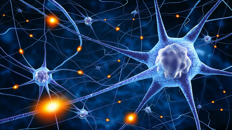 Using Neuroplasticity to Beat Anxiety! (An Important Read)