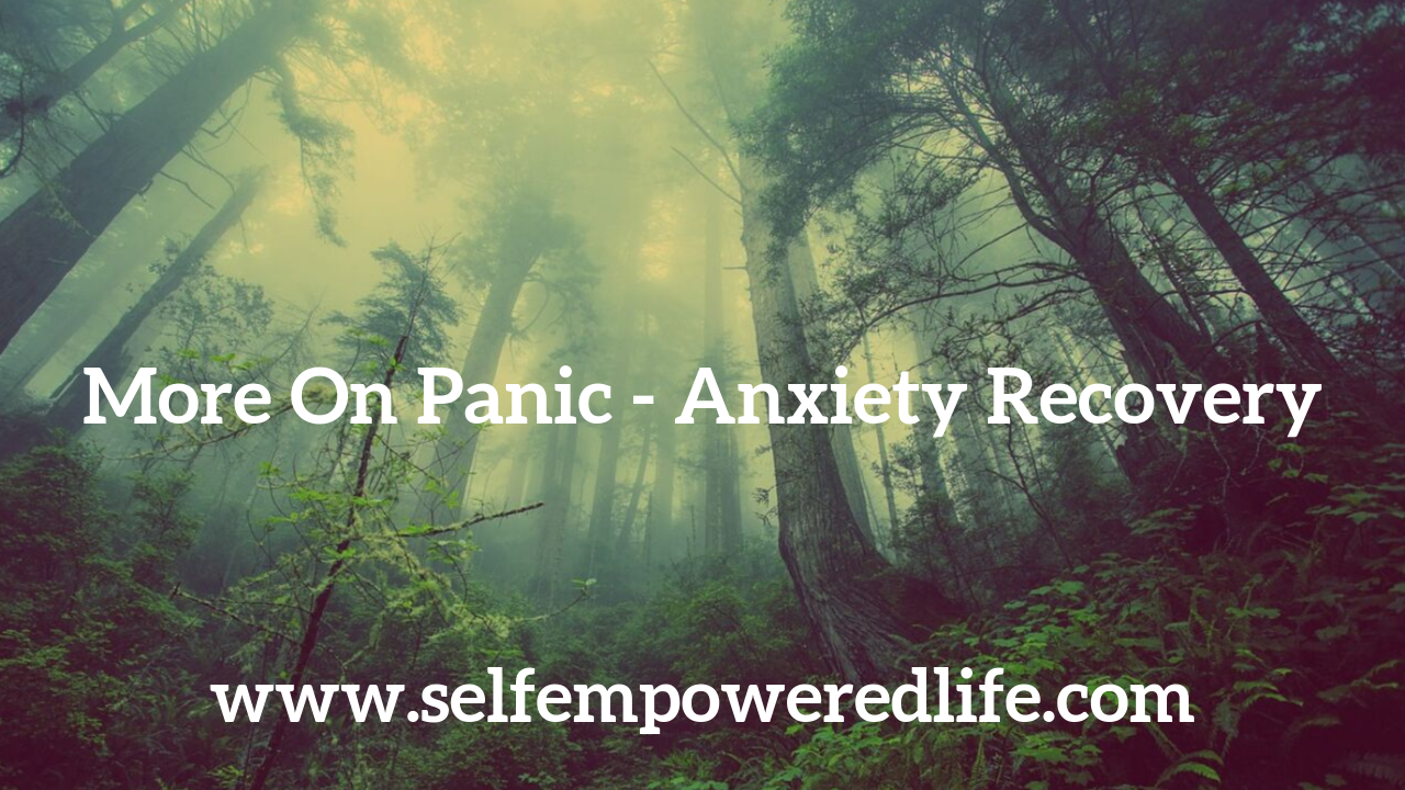 More On Panic – Anxiety Recovery