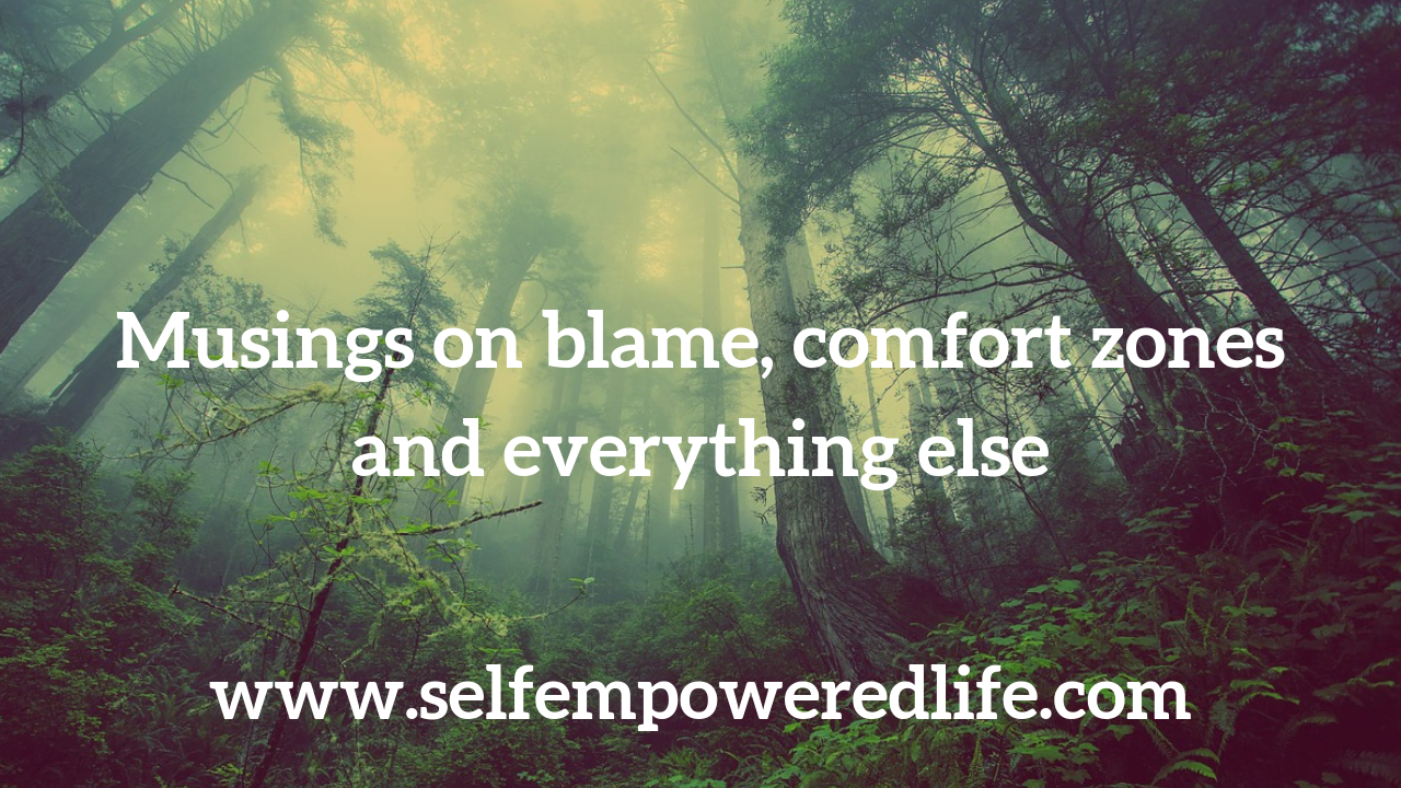 Musings on blame, comfort zones and everything else